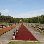 cmentarz-w-palmirach-15