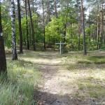 cmentarz-w-palmirach-47