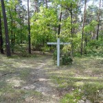 cmentarz-w-palmirach-48