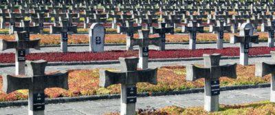 Galeria zdjęć Cmentarza w Palmirach